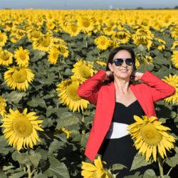 Ensaio fotográfico em Campo de Girassóis em Holambra